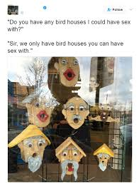What Is Sex Meme - do you have any bird houses i could have sex with meme guy
