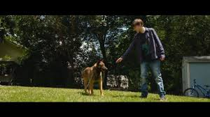 where is the movie let there be light showing meet the dog star who plays heroic max