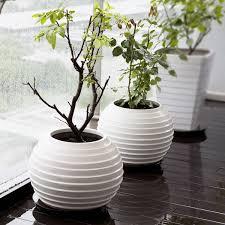 Modern Flower Vase Modern Minimalist Floor Vases For More Home Ideas Www