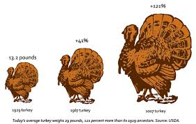 give thanks science supersized your turkey dinner wired