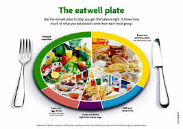 healthy eating representitives u2013 eat well plate vs us food