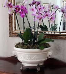 indoor gardening ideas for winter