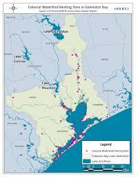 Galveston Island Map Maps