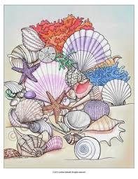 printable pictures of sea shells printable seashell coloring