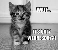 Wednesday Meme - only wednesday memes quickmeme morning humor pinterest