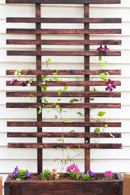 best 25 diy trellis ideas on pinterest trellis ideas plant
