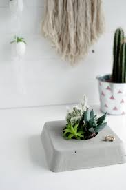 Buy A Planter Diy Concrete Succulent Planter