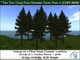 second marketplace 7 pine trees cluster forest mountain