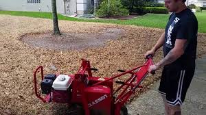 sod removal process grass removal with a sod cutter how to