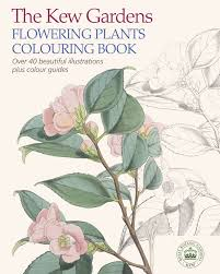the kew gardens world of flowers colouring book kew gardens shop