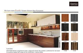 Modern Kitchen Cabinets Los Angeles Modern Kitchen Cabinets Los Angeles Ca