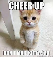 Sad Animal Memes - 20 cute animal memes to cheer you up sayingimages com