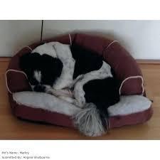 dog sofa bed ebay u2013 forsalefla