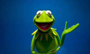 Kermit The Frog Meme - 10 kermit the frog quotes that are way better than the