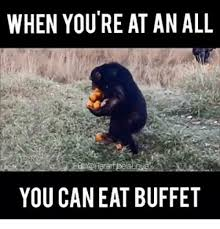 Meme Eating - 25 best memes about all you can eat all you can eat memes