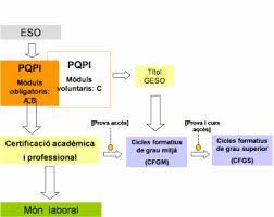 PQPI - PROGRAMES DE QUALIFICACIÓ PROFESSIONAL