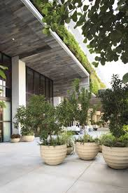 1 hotel landscape pinterest planters plants and gardens