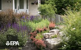 water wise yard saving energy by saving water for your landscape