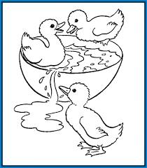 imagenes animales acuaticos para colorear paginas para colorear para animales para para para e on dibujos de