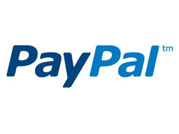 paypal launches domestic payments in india times of india