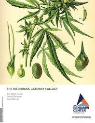 marijuana law policy u0026 reform