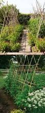 21 easy diy trellis u0026 vertical garden structures a piece of rainbow