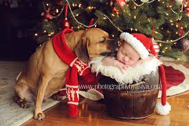 xmas card idea with scarf for dog and hat for baby dog and baby