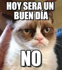 Buen Dia Meme - hoy sera un buen día grumpy cat reverse meme on memegen