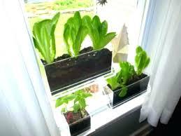 window planters indoor herb planter dianewatt com