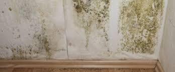 enlever humidité chambre moisissure sur mur causes et comment enlever éviter moisissures