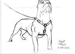 pitbull puppy coloring page free download