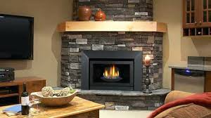 Fireplaces In Homes - fireplace inserts for mobile homes regency liberty gas fireplace