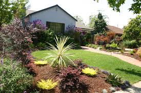 Drought Friendly Landscaping by Drought Tolerant Landscaping Ideas California Brick Path And