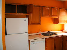Orange Kitchens Ideas Kitchen Burnt Orange Paint Accent Wall Kitchen Walls Kitchenaid