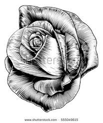 etching stock images royalty free images u0026 vectors shutterstock