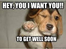 Feel Better Meme - hope your feeling better soon katie xxxxx mans best friends
