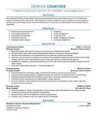 good sample resume uxhandy com