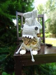 Extra Small Halloween Costumes Shark Costume Cats Extra Small Dogs Hammerhead