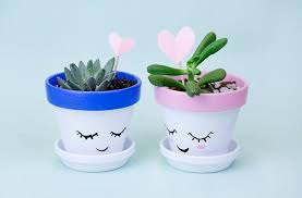 cute succulents day special paint and pot cute succulents in new york new york