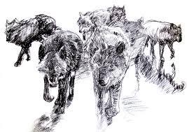 wolves prepatory sketch u2013 sketches paintings and studies recent