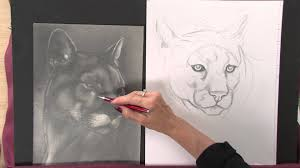 art lessons with lee hammond draw animals in nature youtube