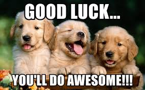 Good Luck Meme - good luck you ll do awesome cutest puppies meme generator