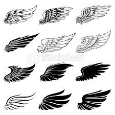 set of twelve vector wings the collection includes a simple form of