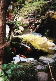 file japanese water garden with carp jpg wikimedia commons