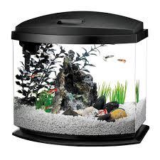 home u003e aquarium supplies u003e aquarium systems u003e mini acrylic fish