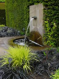 native plants of japan 81 best instead of a lawn images on pinterest garden ideas