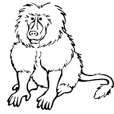 baboon coloring pages getcoloringpages com