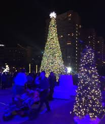in pictures long beach celebrates inaugural christmas tree