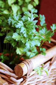 Window Box For Herbs 10 Best Herb Garden Thrillers For Your Container Garden U2013 Flowerups