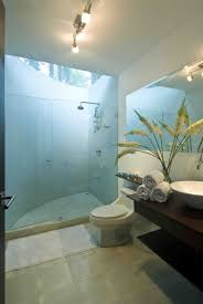 small bathroom design tropical http www houzz club small